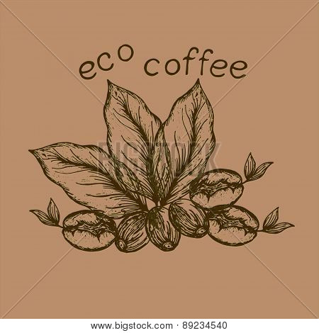 Logo Eco Coffee