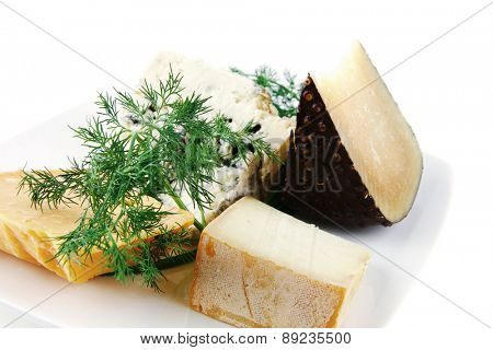 different type of aged cheeses on white porcelain plate