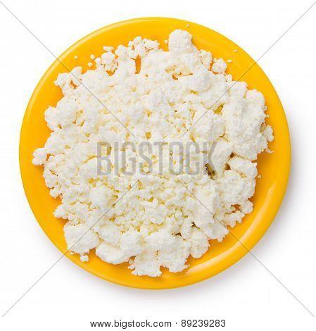 Fresh Curd Cheese