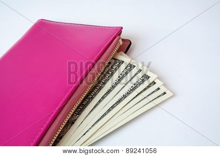 Pink Purse With Money