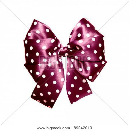 dark purple bow with white polka dots made from silk isolated