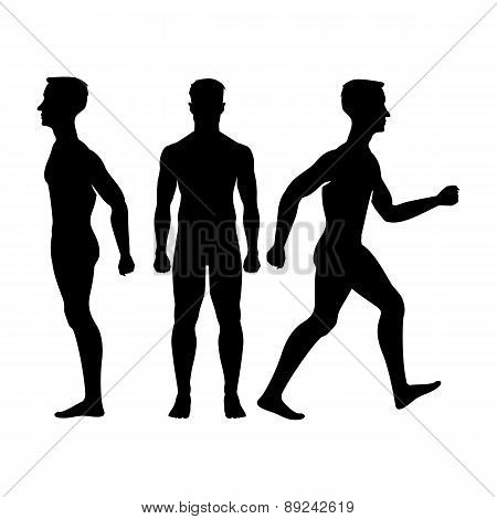 Collection  Silhouettes Of Man In Front And Side View. Vector Illustration, Isolated On White Backgr
