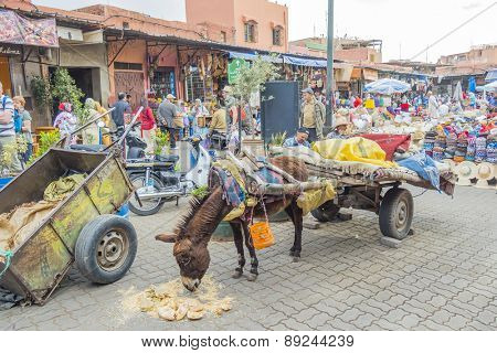 MARRAKESH, MOROCCO, APRIL 4, 2015: Donkey harnessed to a cart eats in the souk