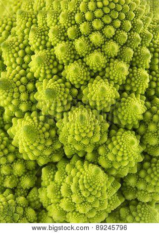 romanesco broccoli background