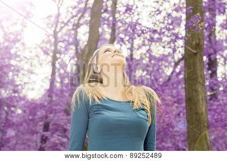 Beauty in woods