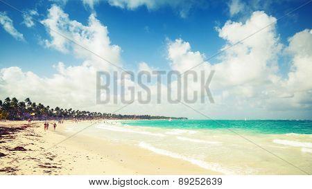Caribbean Beach Landscape. Dominican Republic