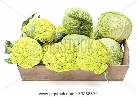 Cauliflower And Cabbage