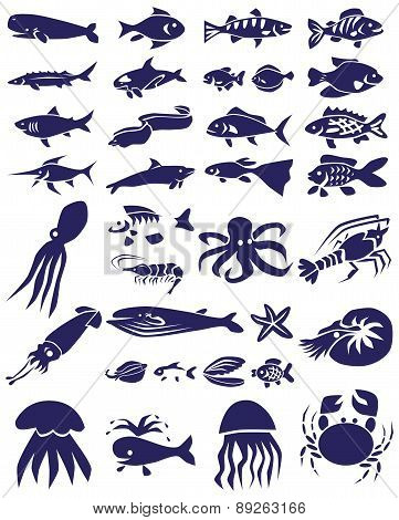 Fish And Marine Reptiles Icons On White
