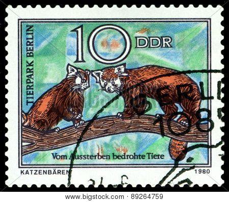 Vintage  Postage Stamp. Wild Cats.