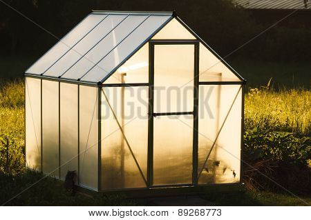 Small greenhouse in backyard