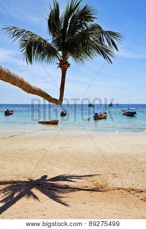 Isle  Asia In  Kho Phangan Thailand Bay   Beach    Rocks Pirogue