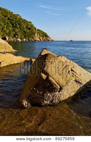 Stone    Thailand Kho Tao Bay Abstract Of