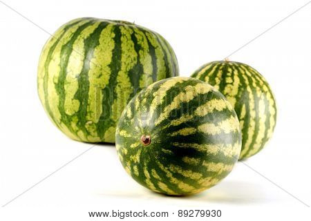 Three water melons on white background