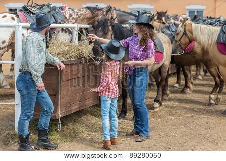 cowboy family of three feed the horses hay