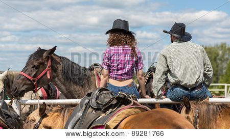 cowboy couple sit back  and behold horses