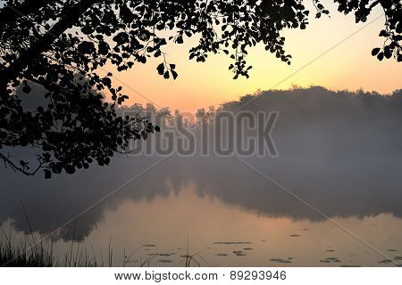 Silhouette Leaves Frame Border With Lake And Dawn Background