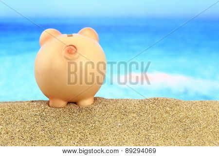 Piggy bank on the beach looking to the sea
