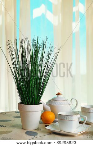 Green plant with teapot, cups and lemons on table on curtains background