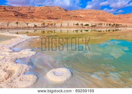 Evaporated salt out of the water with beautiful patterns. Lowering the water level in the Dead Sea