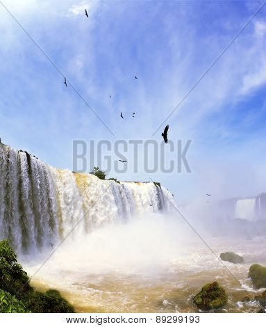 White whipped foam of water and a thin mist over the water.  Between a waterfall and a rainbow fly huge Andean condors. The most high-water waterfall in the world - Iguazu.