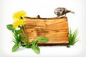 image of dandelion  - Wooden banner - JPG