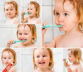 stock photo of dental  - photo collage dental hygiene - JPG