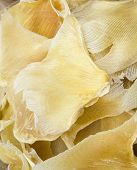 stock photo of fin  - Dried shark fin for soup - JPG