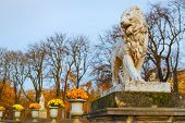 stock photo of garden sculpture  - Lion sculpture at the Luxembourg Garden - JPG