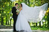 foto of bridal veil  - Young Beautiful Wedding Couple With Big Bridal Veil - JPG