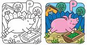 image of porpoise  - Coloring book of little funny little pig or piglet running around  the yard - JPG