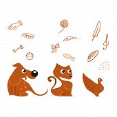 stock photo of bird-dog  - Vector group of pets  - JPG