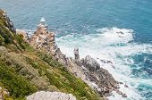 picture of fynbos  - New lighthouse at Dias Point Cape Point in the Table Mountain National Park - JPG