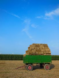 stock photo of hayride  - Hay bales stacked on a green trailer in a farmer - JPG