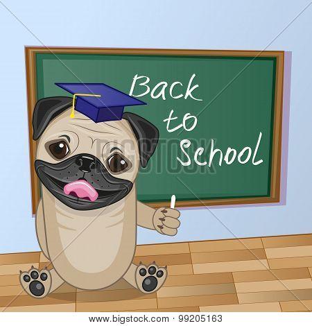 Cartoon Pug Dog Wrote In Classroom