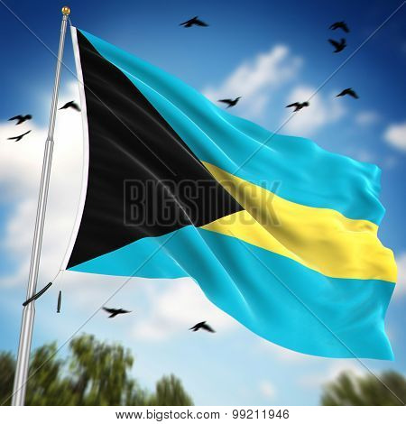 Flag Of The Bahamas