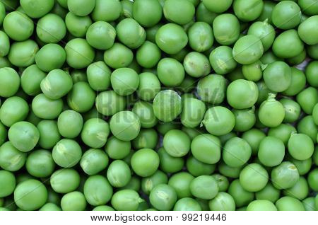 Green Pea, Peas