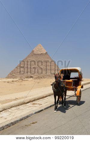 Tourist chariot in Giza Pyramids - Cairo, Egypt