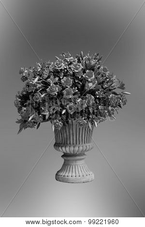 Black And White Flowers In A Flowerpot