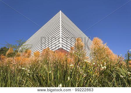 Corner Building Flora