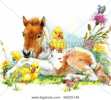 Horse And And Ducklings. Background With Flower. Illustration Watercolor