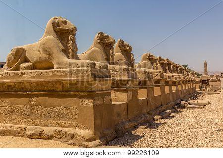 Luxor Avenue