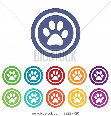 Animal signs colored set
