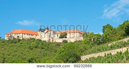 Castle Freyburg In A Wine Area