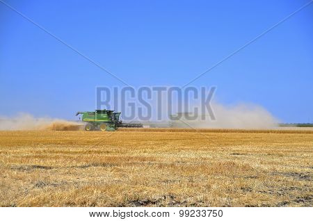 Harvest time in the wheat field