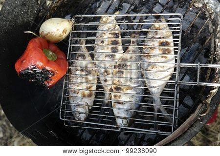 Grilled fish with pepper and onion