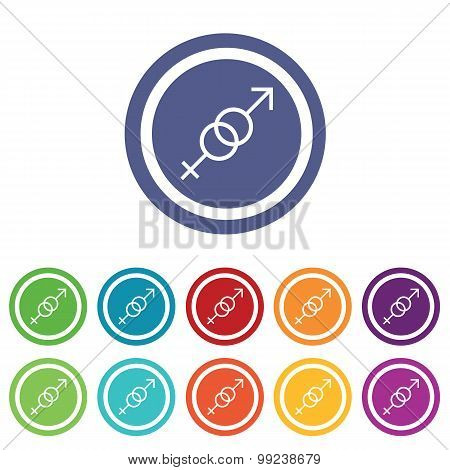 Gender symbols signs colored set
