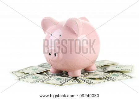 Pink Piggy Bank On Dollars Isolated On A White