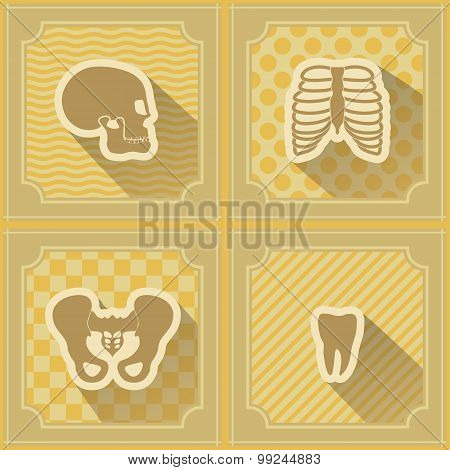 Seamless background with human bones