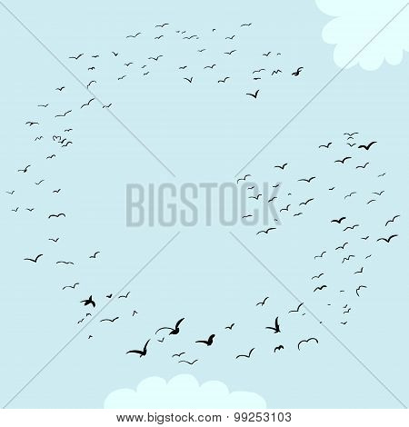 Bird Formation In G