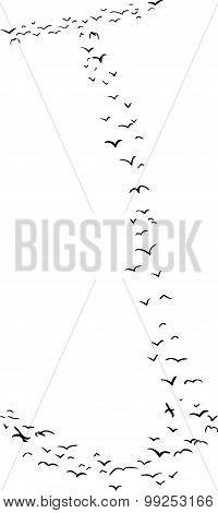 Bird Formation In J